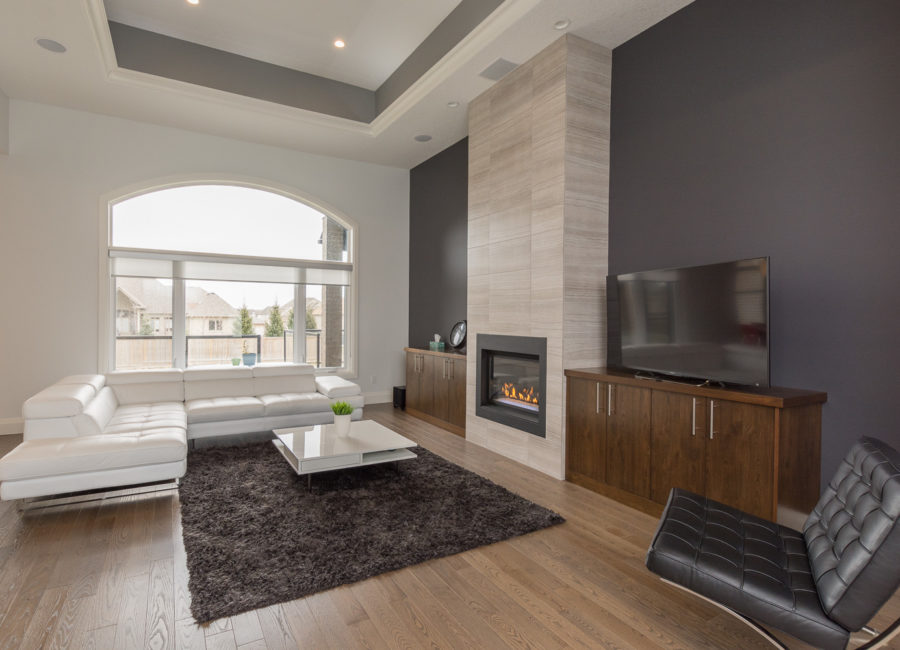 modern living room fire place